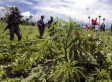 End The War On Drugs, Say Nobel Prize-Winning Economists