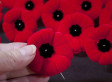 Remembrance Day: Who Are You Remembering?