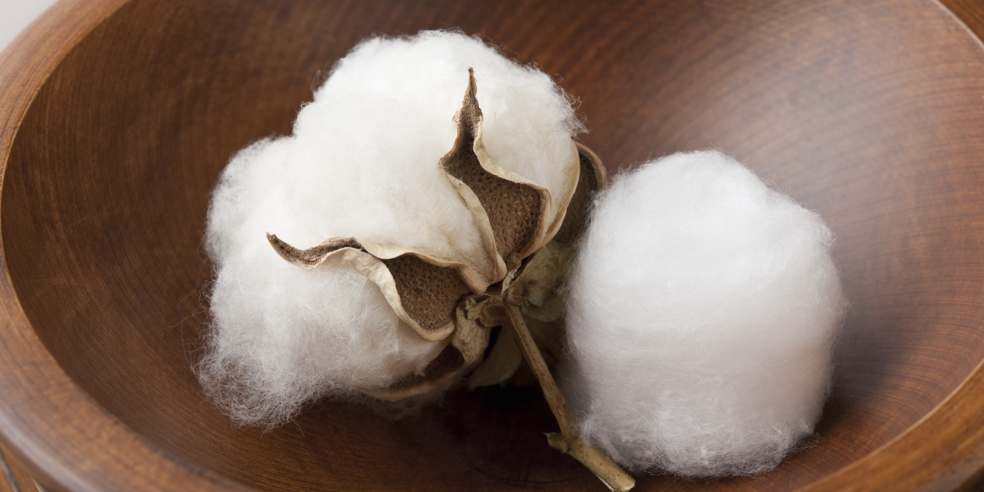 cotton research papers Unsw sydney nsw 2052 australia telephone +61 2 93851000 authorised by deputy vice-chancellor (research) unsw cricos provider code: 00098g abn.