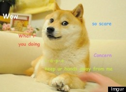 Doge! Such Funny Best Internet Meme Wow