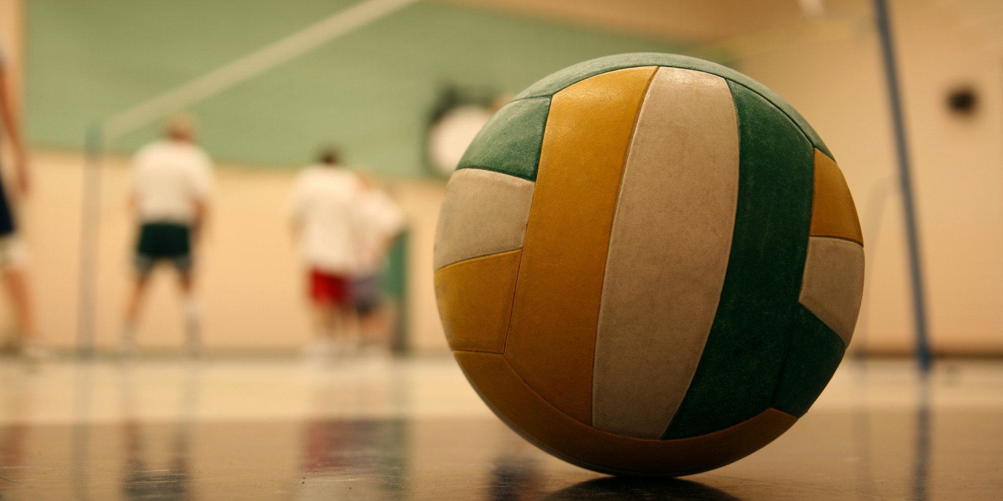 Most Favorite Hobby Volleyball Jessica Ryu S Hobbies