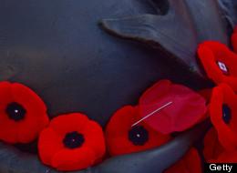 Québec souligne le jour du Souvenir (VIDÉO)