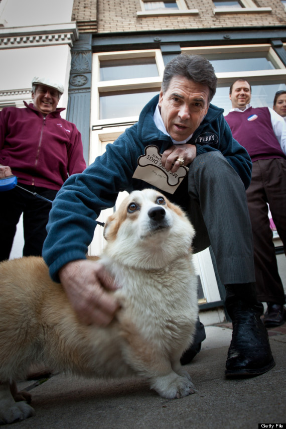 rick perry dog