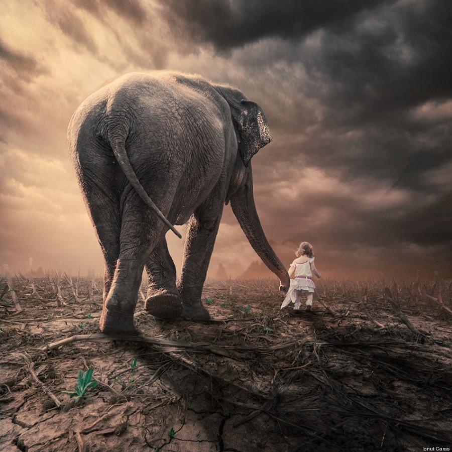 bambina elefante