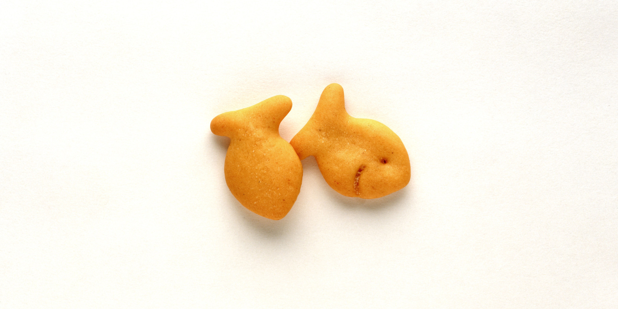 Lessons From a Box of Goldfish (Even the Whole Grain Kind) | Caron ...