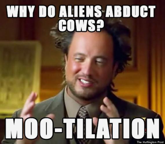 mootilation