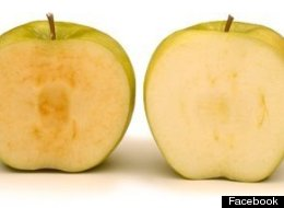 B.C. Apples That Don't Brown Approved For Sale In U.S.