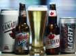 Molson Brand 'At Risk,' Company Says In Report