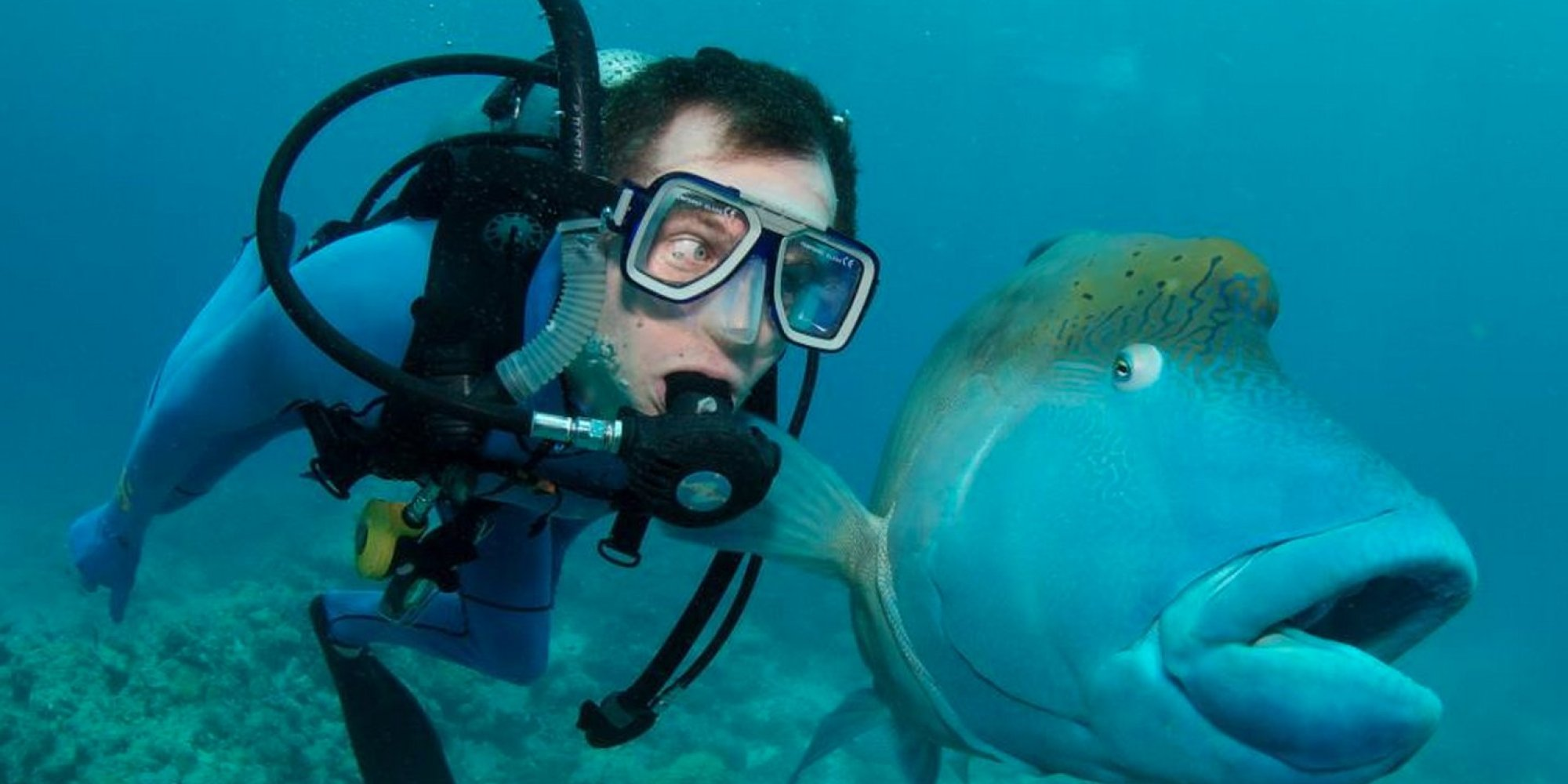 Diving detours in the other south of France: Millau & The ...  |Scuba South France