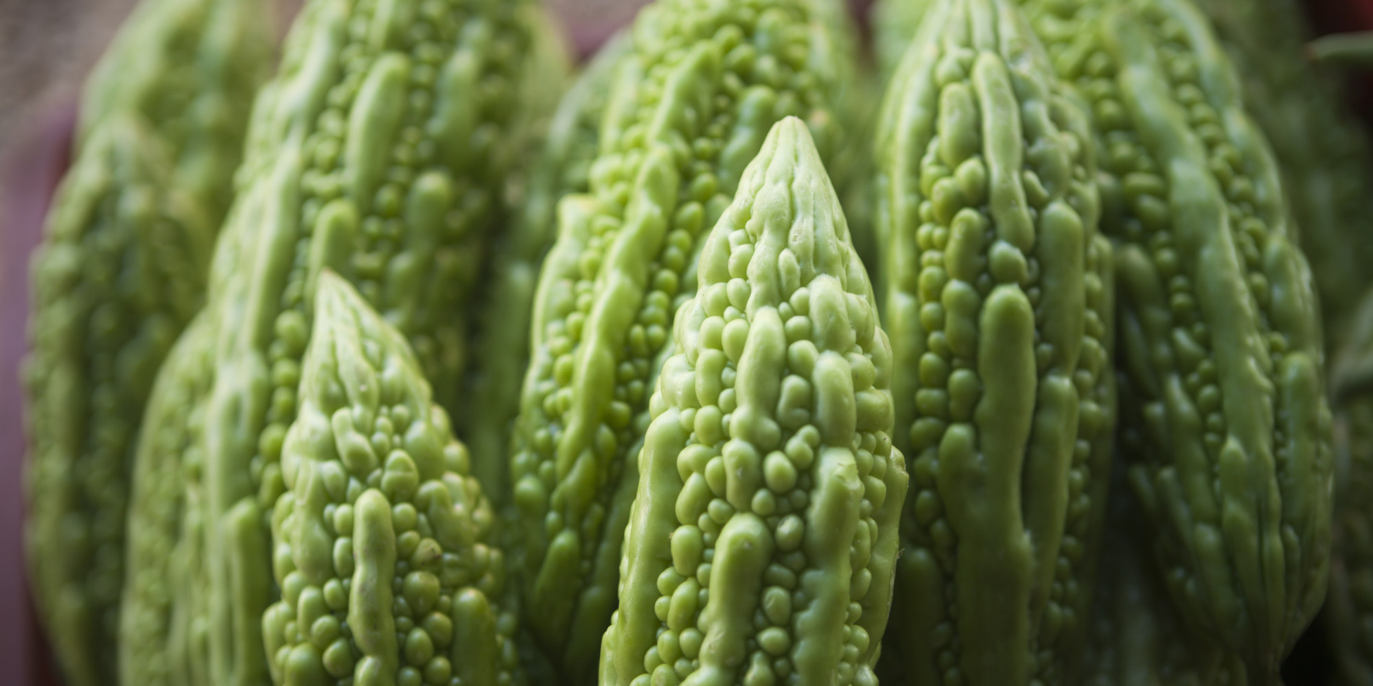 Bitter melon could slow head and neck cancer growth animal study suggests huffpost - Bitter melon culture ...