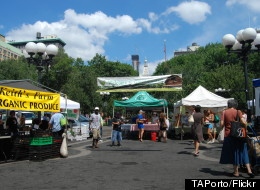 Seize the Season: Eat and Buy Locally