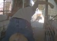 Alleged Animal Abuse At Former Walmart Pork Supplier Caught On Camera (GRAPHIC VIDEO)