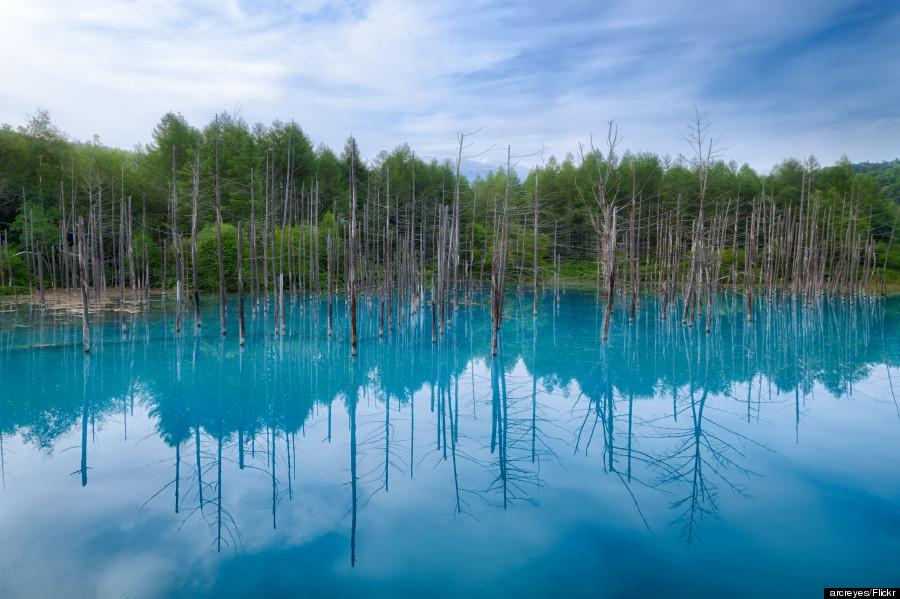 blue pond japan