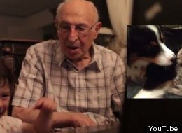Grandpa Watches Adoringly As Granddaughter Reacts To Photos Of Kitties