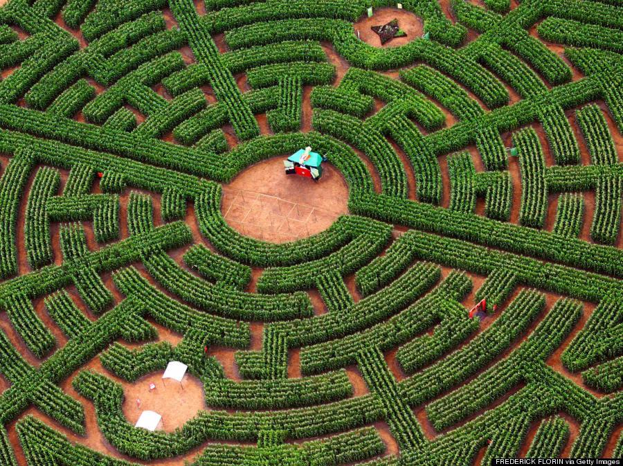 ribeauville labyrinthus