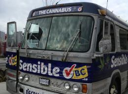 sensible bc cannabus sale