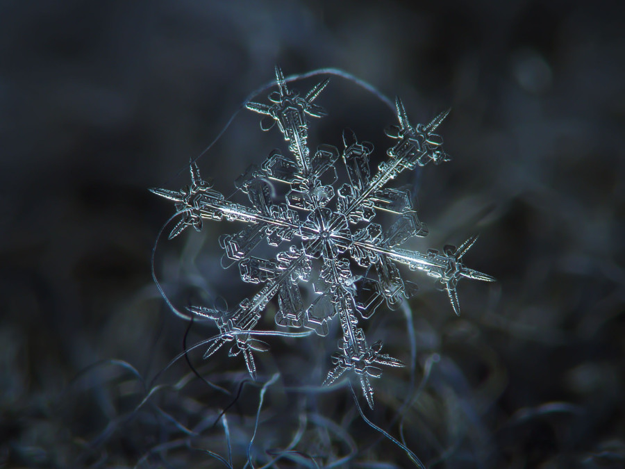Unbelievable Close Up Photos Of Snowflakes Reveal A Side Winter