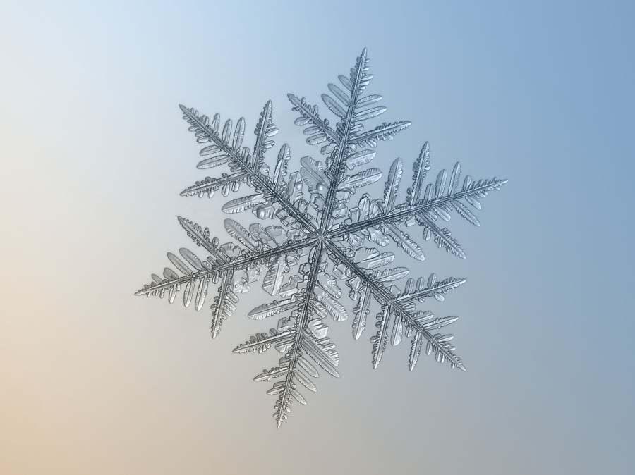 Unbelievable Close-Up Photos Of Snowflakes Reveal A Side Of