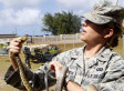 Mice Dropped On Guam To Combat Invasive Snake Species -- Again