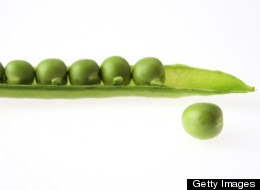 The Power Of The Pea