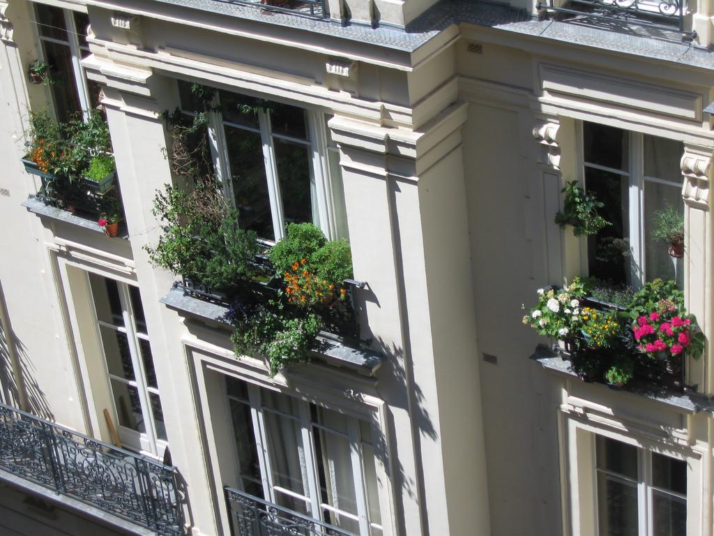 french flower terrace
