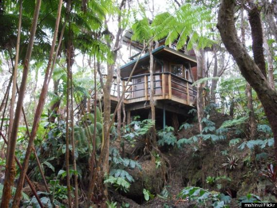 treehouse hawaii