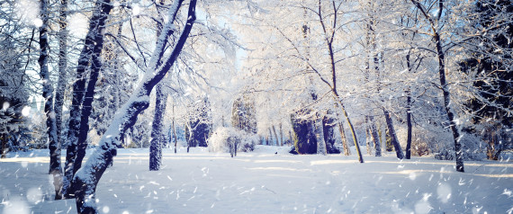 13 Winter Scenes That Show The Best Side Of The Season