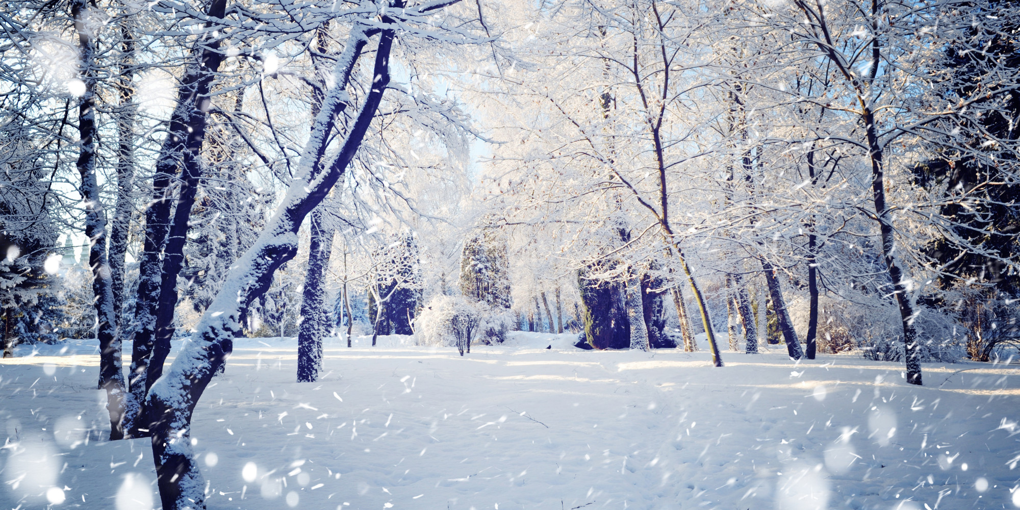 Facebook Cover Photos Scenery Winter | galleryhip.com - The ...