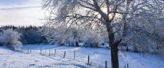 10 Winter Wonderlands To Energize Your Spirit Photos