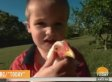 3-Year-Old Florida Boy With Autism Denied Right To Keep His Pet Chickens [UPDATE]
