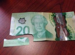 canada new Money
