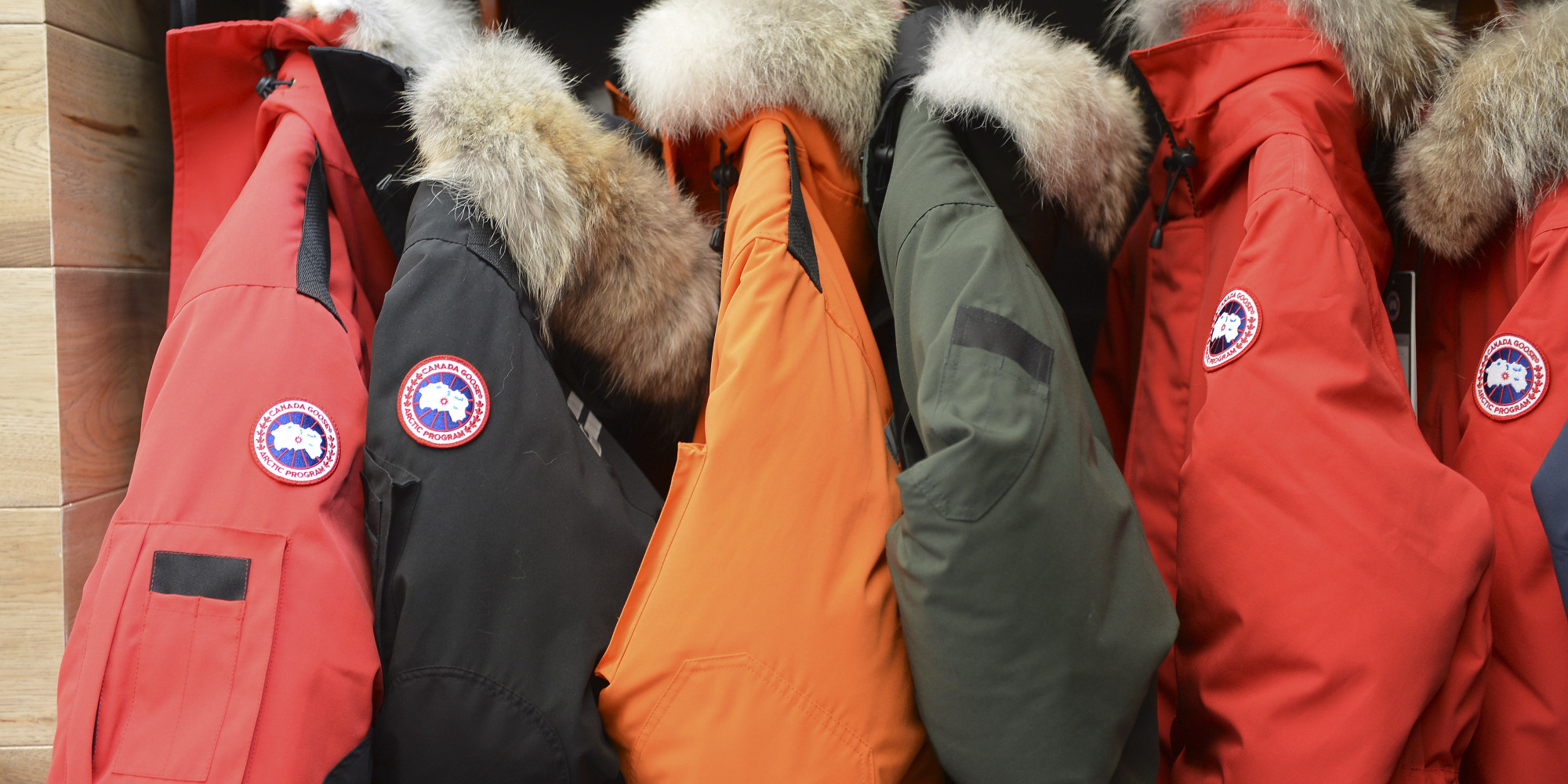 canada goose official birth