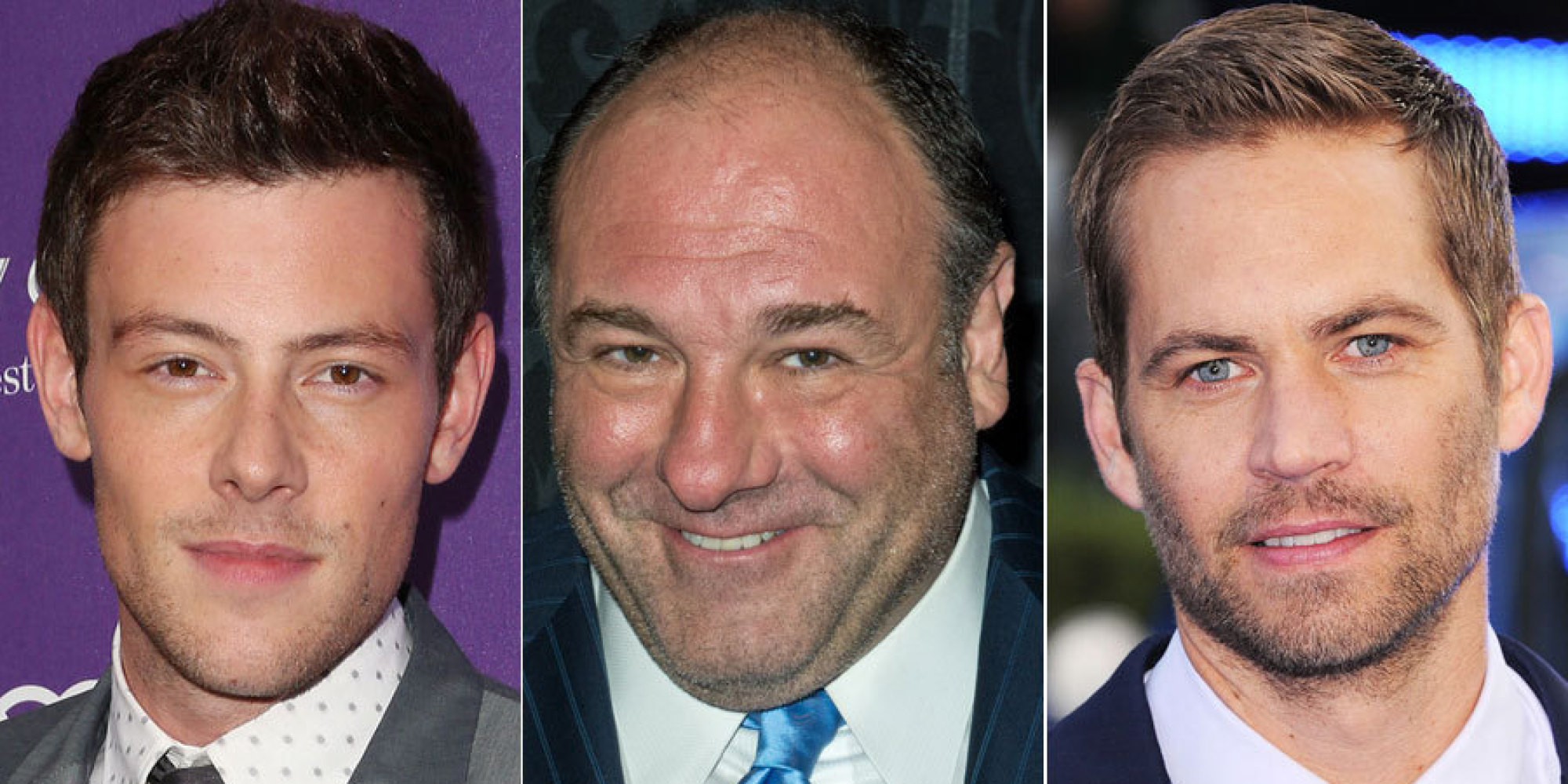 Celebrity Deaths 2013: Stars We Loved And Lost (VIDEO, PICS)