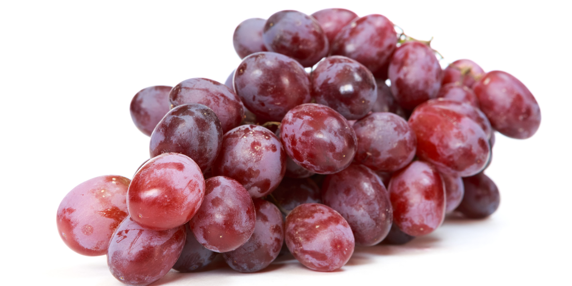 Sasi 101 infaux sant assistance et soins infirmiers - Maladie du raisin photo ...