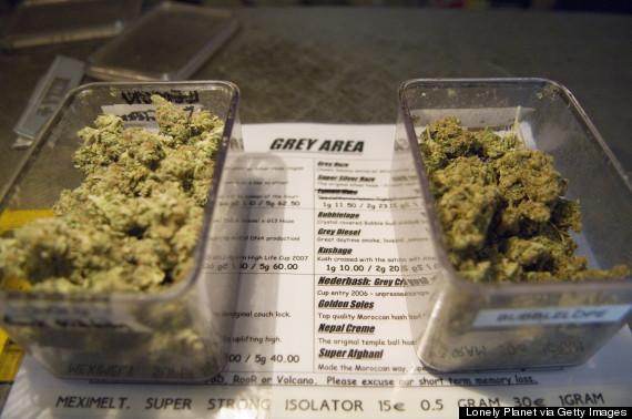 amsterdam marijuana