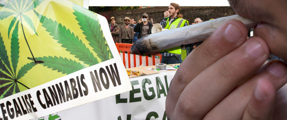 legalise cannabis