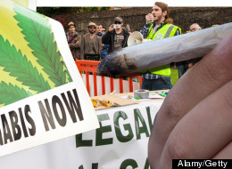 Rejecting Cannabis Legalisation Is 'Unscientific And Unethical'