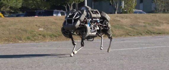 pick up 85376 ae62e ROBOTIQUE - Le futur de Google passera-t-il par les robots  Vendredi 13  septembre, le géant du web a confirmé le rachat (pour un montant inconnu) de  Boston ...
