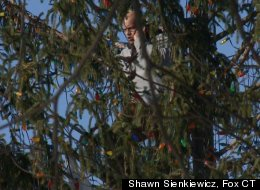Man Named Noel Arrested For Climbing Christmas Tree