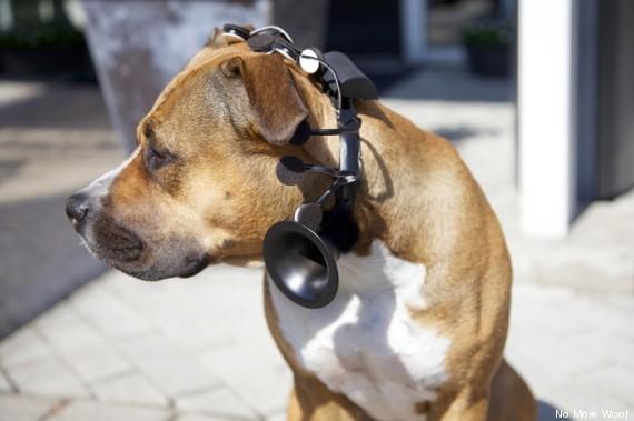 Gen Con Dog Collar