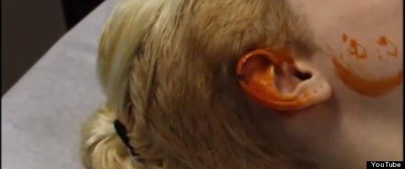 elf ears 3