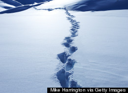 Footprints In Snow Lead Cops To Burglary Suspect