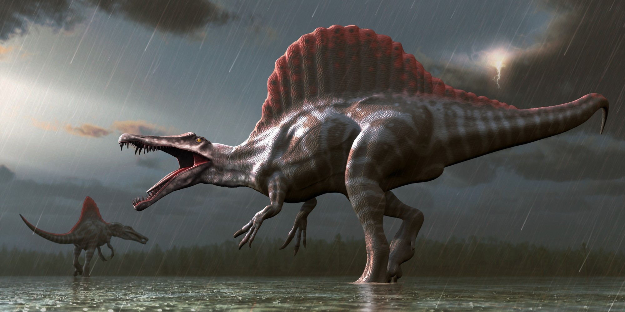 Dinosaur Feathers Study Suggests Most Species Had Scales ...