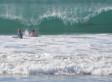Photobombing 'Shark' Actually A Dolphin, Expert Says