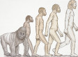 Surprising Number Of Americans Don't Believe In Evolution (VIDEO)