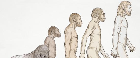 evolution survey
