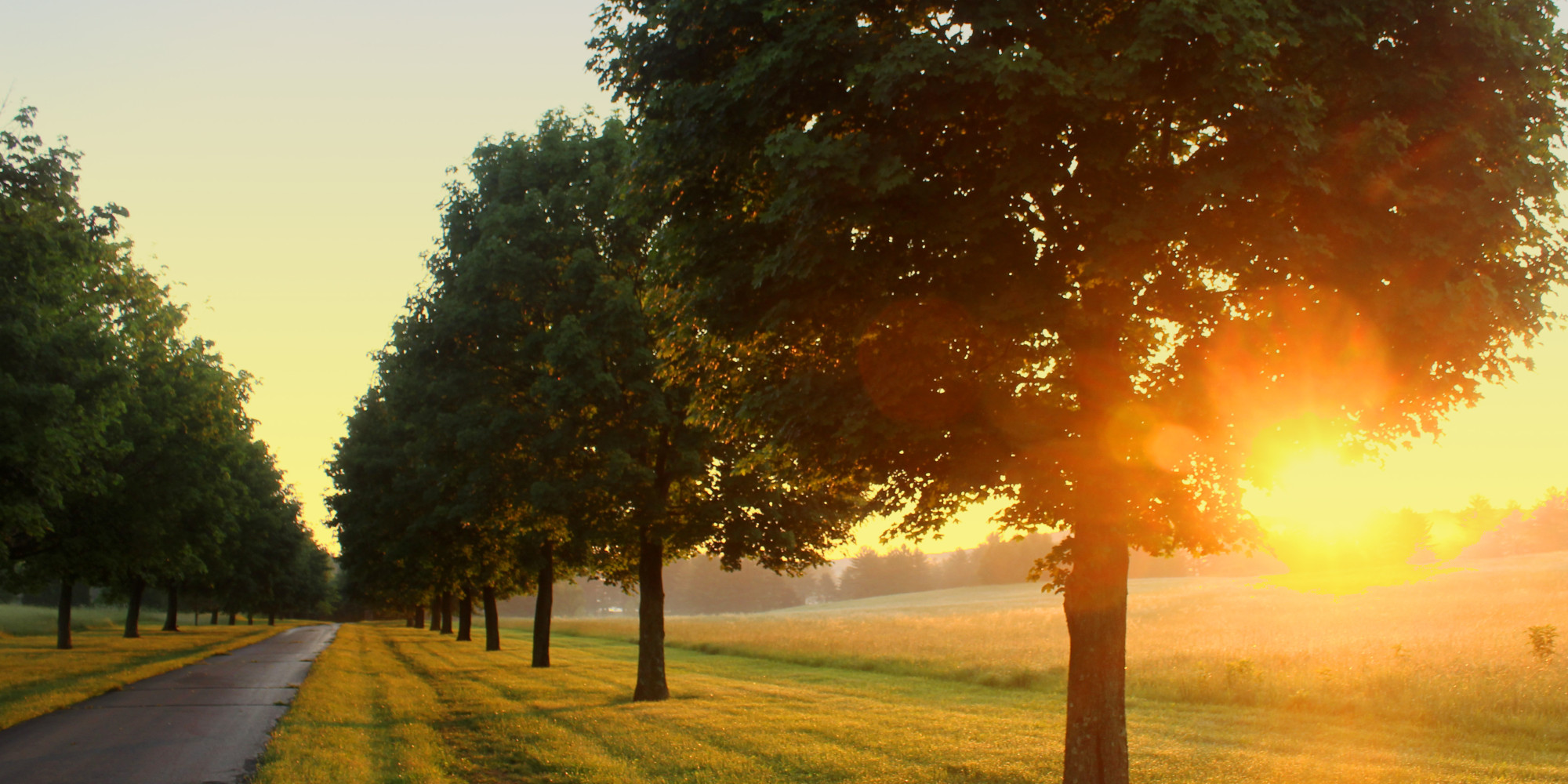 The Benefits Of A Morning Walk For A Good Night's Sleep ...