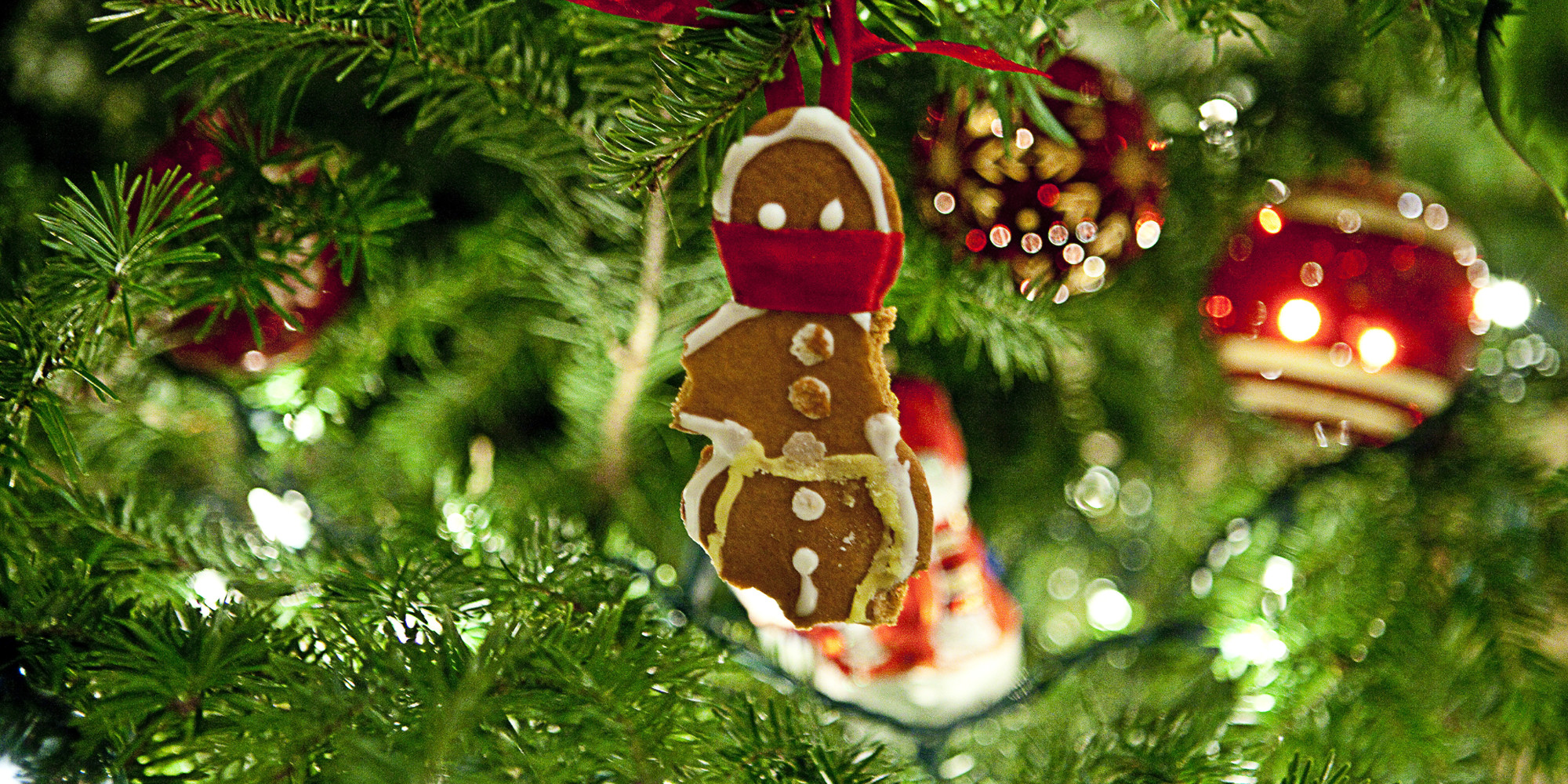 Tree Oh Christmas Tree Fiber Optic Christmas Tree Wwemgwco Oh
