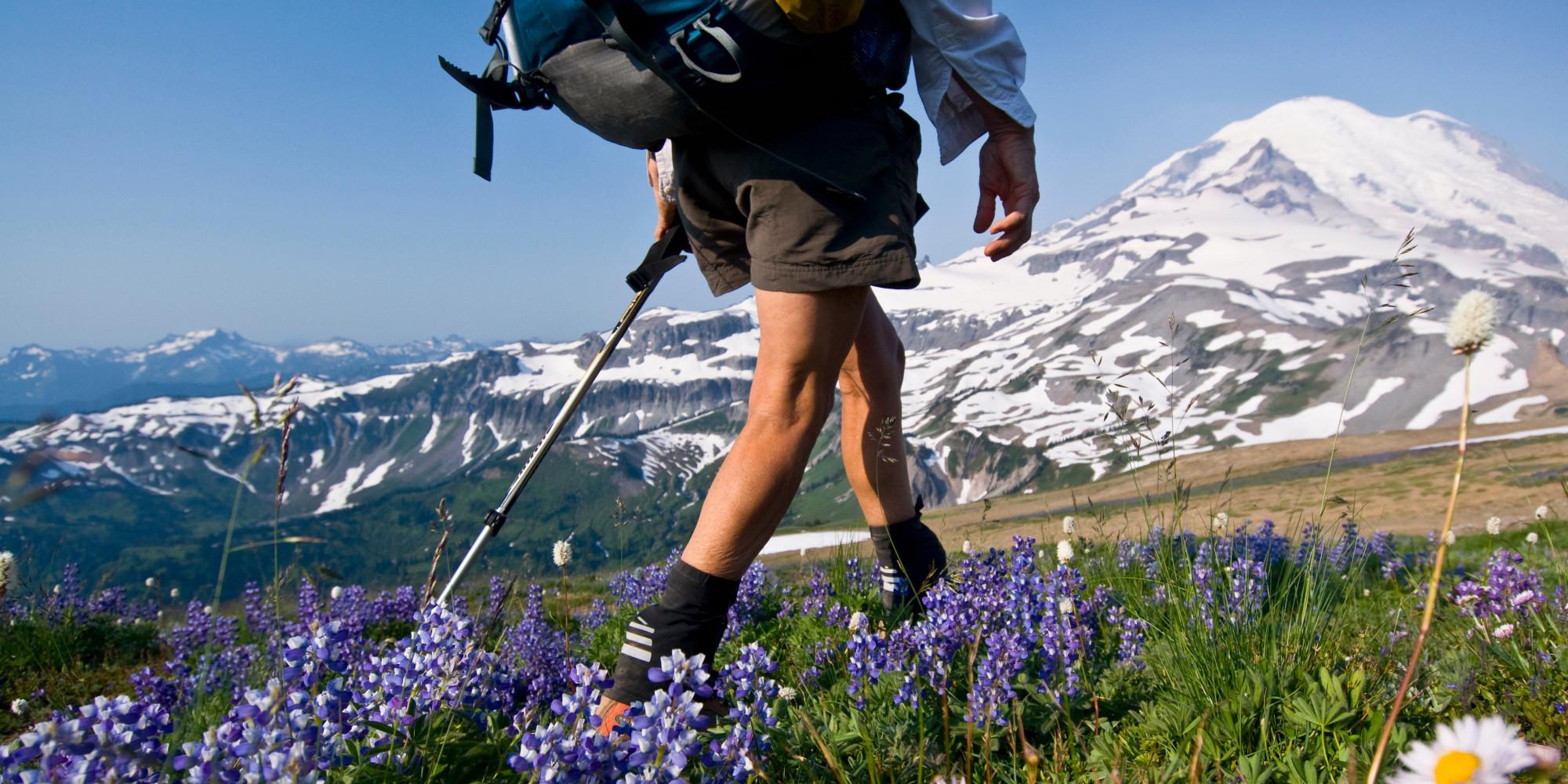 Hasil gambar untuk hiking
