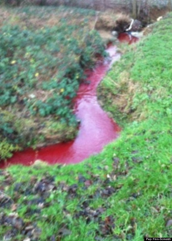 blood red river northampton
